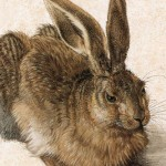 "Dürers ""Junger Hase"""